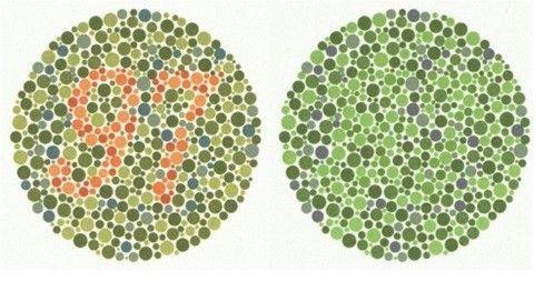 Illustrationen: Ser man talet i den vänstra bilden har man normalt färgseende. Ser man talet i den högra bilden kan man ha en svag färgblindhet.