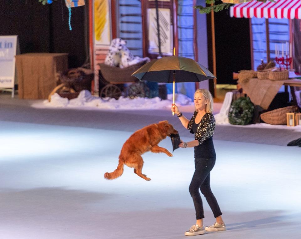 """Sonja från Danmark i ett snyggt Cabaret-inspirerat nummer till sången """"All that jazz"""". Foto: Tobias Dahlén / Sweden Photo Passion"""